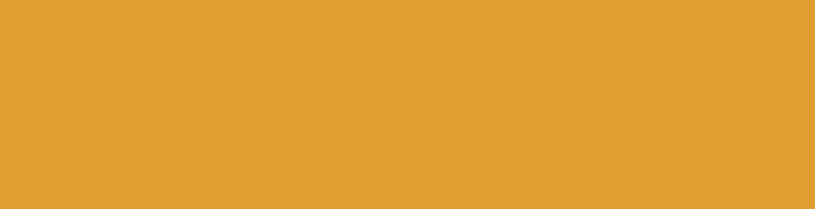 NPG-Logo-Yelllow.png